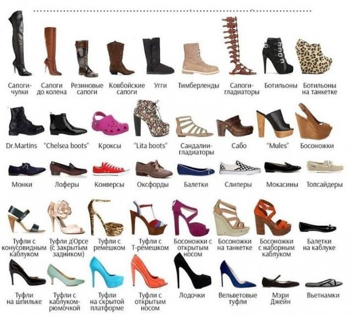 разновидность женской обуви с фото мне
